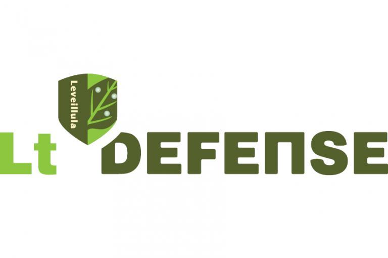 Logo Lt Defense